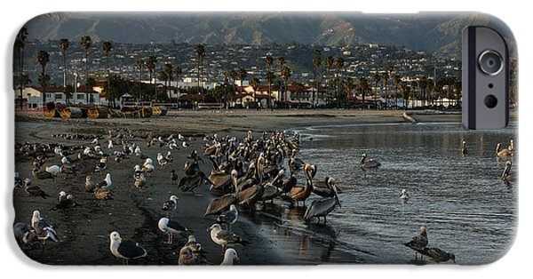 Santa iPhone Cases - Santa Barbara Beach Crowd  iPhone Case by Georgia Mizuleva