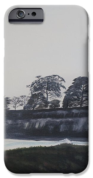 Santa Barbara Shoreline Park iPhone Case by Ian Donley