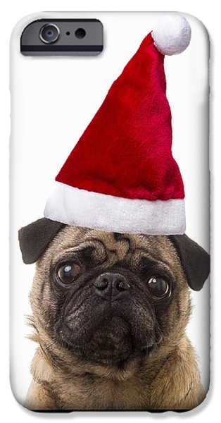 Santa Pug - Canine Christmas iPhone Case by Edward Fielding