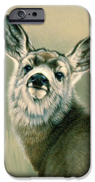 Fawn iPhone Cases - Sassy Look iPhone Case by Paul Krapf