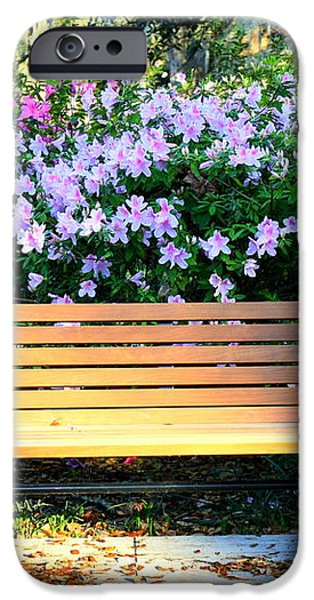 Savannah Bench iPhone Case by Carol Groenen