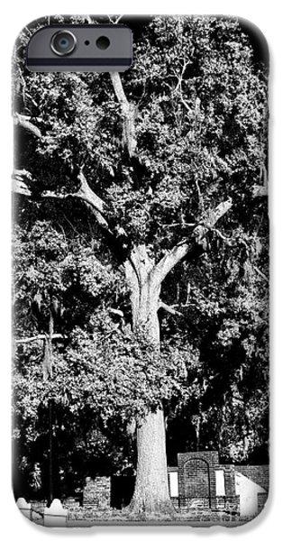 Savannah Graves iPhone Case by John Rizzuto