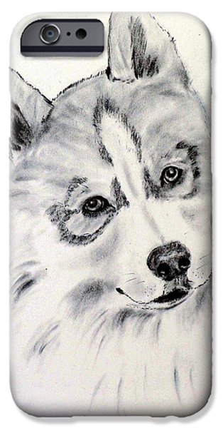 Husky Drawings iPhone Cases - Savannah iPhone Case by Jane Baribeau