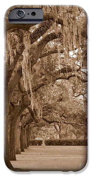 Savannah iPhone Cases - Savannah Sepia - Emmet Park iPhone Case by Carol Groenen