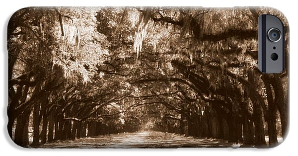 Savannah iPhone Cases - Savannah Sepia - The Old South iPhone Case by Carol Groenen