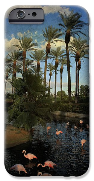 Flamingo iPhone Cases - Savoring the Last Light iPhone Case by Laurie Search