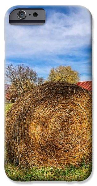 Scarecrow's Dream iPhone Case by Debra and Dave Vanderlaan