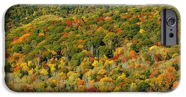 Nature Scene Tapestries - Textiles iPhone Cases - Colors of Nature iPhone Case by Velma Knowles