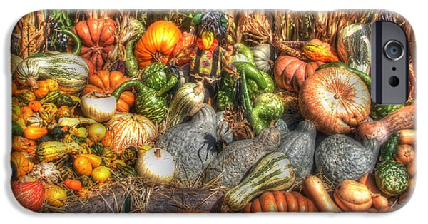 Fall Scenes iPhone Cases - Scenes of the Season iPhone Case by Joann Vitali