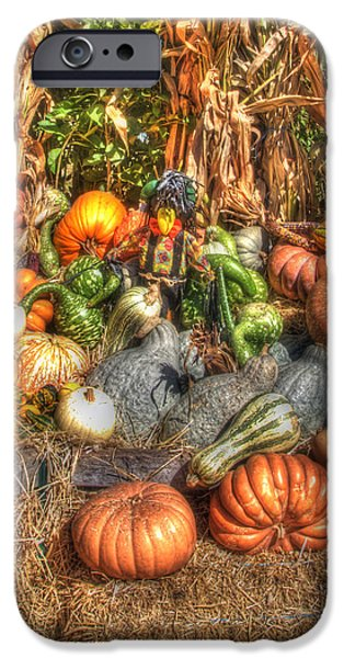 Scenes of the Season iPhone Case by Joann Vitali