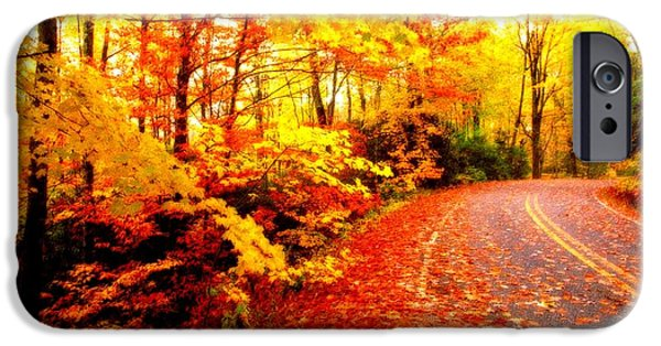 Park Scene Mixed Media iPhone Cases - Scenic Autumn Drive iPhone Case by L Brown