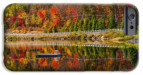 Autumn iPhone Cases - Scenic road in fall forest iPhone Case by Elena Elisseeva