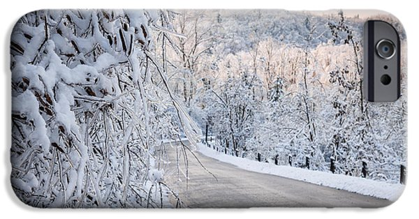 Winter Storm iPhone Cases - Scenic road in winter forest iPhone Case by Elena Elisseeva