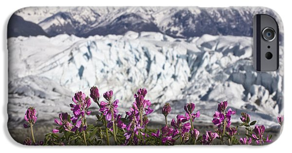 Matanuska iPhone Cases - Scenic View Of Matanuska Glacier And iPhone Case by Hal Gage