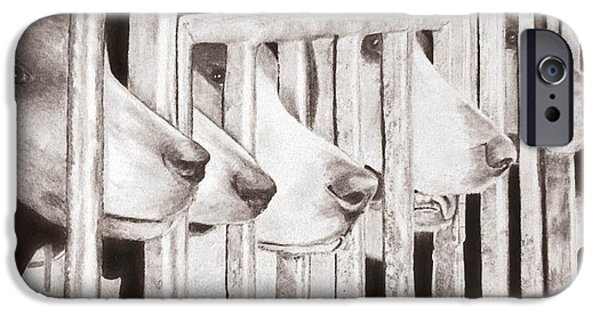 Animal Drawings iPhone Cases - Scent of the Hunt iPhone Case by Renee Templeton