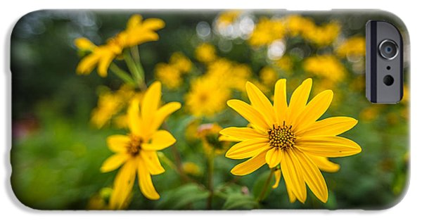 Bayside iPhone Cases - Schlitz Audubon Wild Flower iPhone Case by Andrew Slater