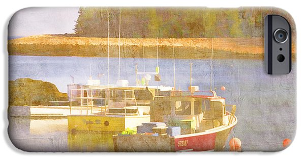 Down East iPhone Cases - Schoodic Peninsula Maine iPhone Case by Carol Leigh