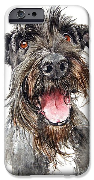 Black Dog iPhone Cases - Schultz iPhone Case by Debra Jones