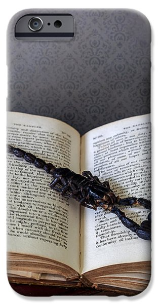 Creepy iPhone Cases - Scorpion iPhone Case by Joana Kruse