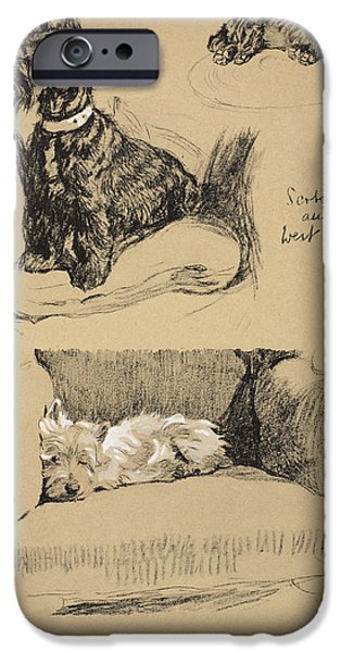 Black Dog iPhone Cases - Scotch And West Highlander, 1930 iPhone Case by Cecil Charles Windsor Aldin