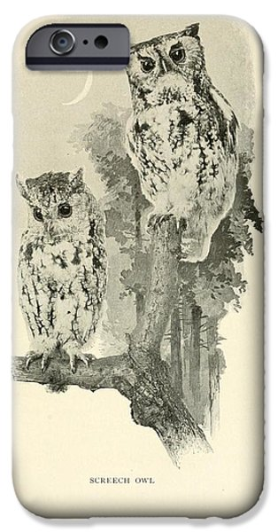 Dentist Drawings iPhone Cases - Screech Owls iPhone Case by Philip Ralley