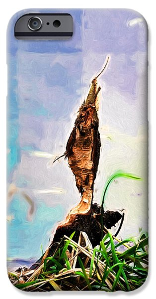 Beaver Digital iPhone Cases - sculpture by B front IMP 2-Tree in water sculptured by beavers iPhone Case by Leif Sohlman
