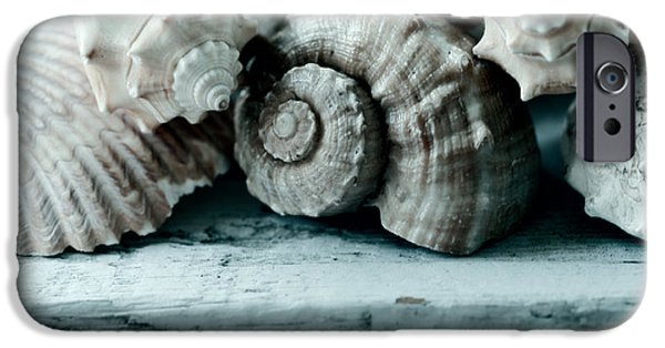 Beach Art iPhone Cases - Sea Gifts iPhone Case by Bonnie Bruno
