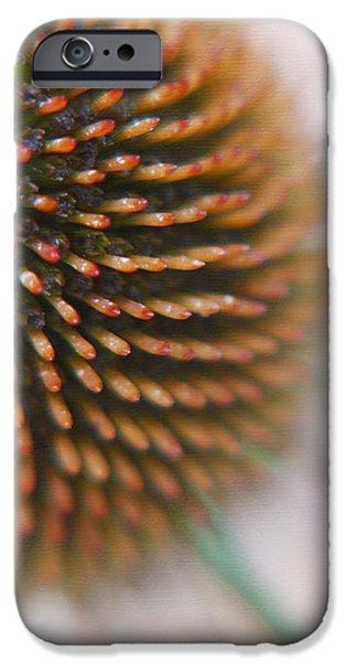 Sea Hedgehog iPhone Case by Irina Wardas
