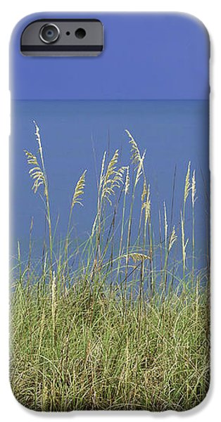 Sea Oats by the Blue Ocean and Sky iPhone Case by Karen Stephenson