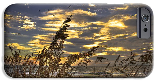 Oak Creek iPhone Cases - Sunrise Sea Oats Pelicans Dune Fences on Tybee Island Georgia iPhone Case by Reid Callaway