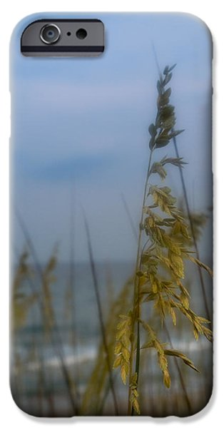 North Sea iPhone Cases - Sea Oats  iPhone Case by Shane Holsclaw