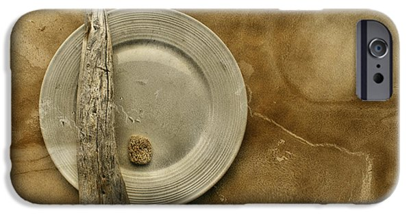 Beige iPhone Cases - Sea Plate - sp9b5b iPhone Case by Variance Collections