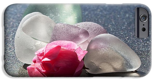 Nature Glass Art iPhone Cases - Sea Rose iPhone Case by Barbara McMahon