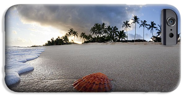 Beach iPhone Cases - Sea Shell Sunrise iPhone Case by Sean Davey