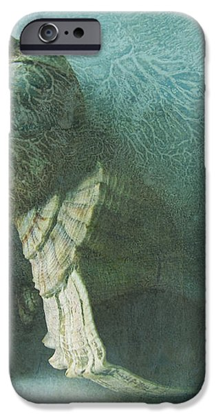 Sea Shells III teal blue iPhone Case by Ann Powell