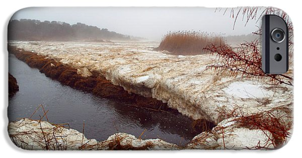 Salt Marsh. New England iPhone Cases - Sea Smoke iPhone Case by Dianne Cowen