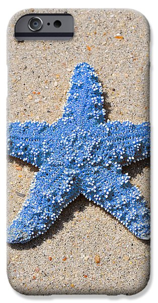 Sea Star - Light Blue iPhone Case by Al Powell Photography USA