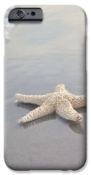 Wave iPhone Cases - Sea Star iPhone Case by Samantha Leonetti