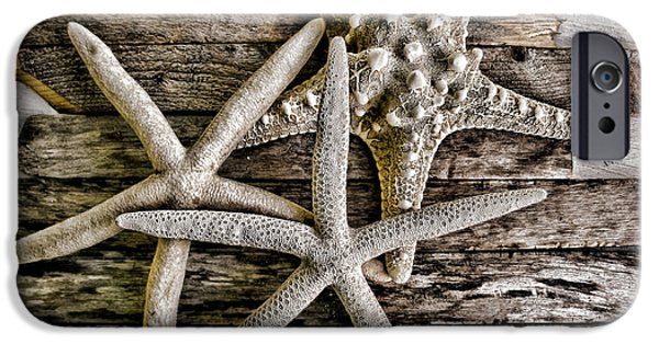 Original Photography iPhone Cases - Sea Stars iPhone Case by Colleen Kammerer