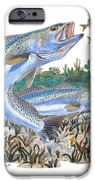 Sea Trout iPhone Case by Carey Chen