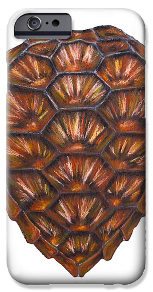 Nature Abstract Pastels iPhone Cases - Sea Turtle Shell iPhone Case by Alexandra Nicole Newton