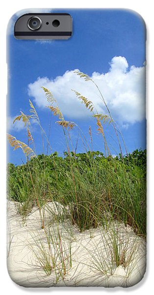 Shore Excursion iPhone Cases - Seagrass And Sky iPhone Case by Randall Weidner