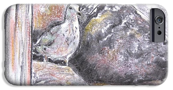 Seagull Pastels iPhone Cases - Seagull Among the Rocks iPhone Case by Indra Singh
