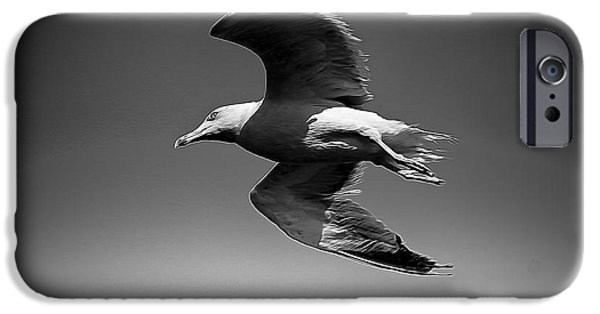 Flying Seagull Digital Art iPhone Cases - Seagull flying higher  iPhone Case by Stefano Senise