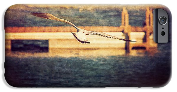 Sea Birds Digital Art iPhone Cases - Seagull Flying iPhone Case by Maria Angelica Maira
