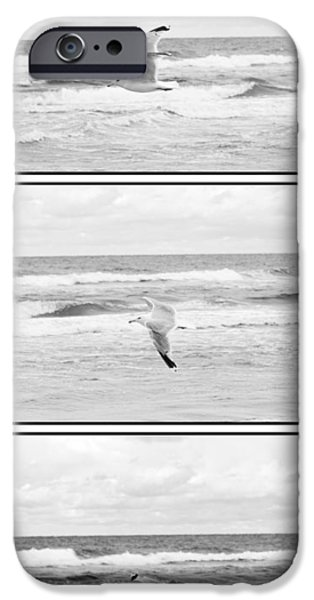 Flying Seagull iPhone Cases - Seagull flying  iPhone Case by Toppart Sweden