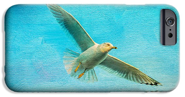 Sea Birds iPhone Cases - Seagull In Flight iPhone Case by Michael Petrizzo