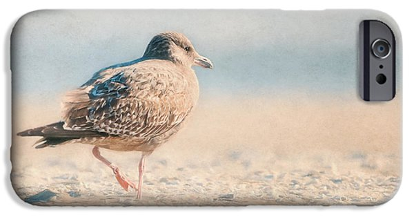 Herring Gull iPhone Cases - Seagull On Beach - Ocean iPhone Case by Sharon Norman