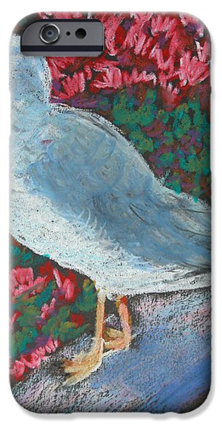 Seagull Pastels iPhone Cases - seagull on ledge at Lincoln park zoo iPhone Case by Giraldo Lee