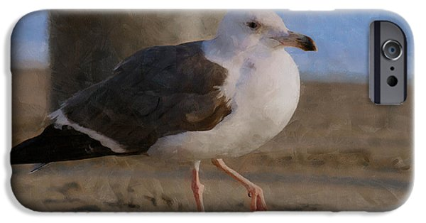 Seagull iPhone Cases - Seagull on the beach iPhone Case by Ernie Echols
